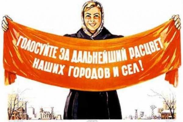 Под Воронежем образовалась очередь в депутаты сельсовета