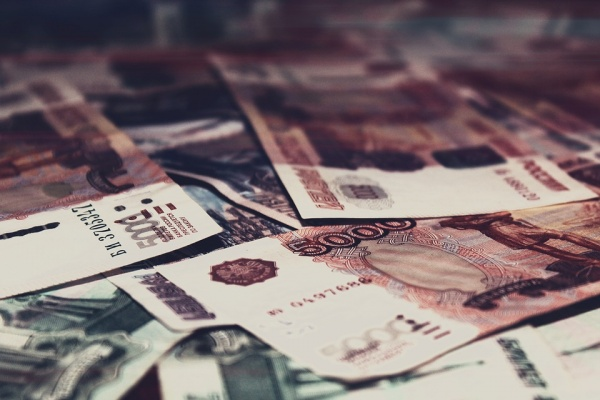 В Воронежской области преступники за год нанесли государству ущерб 675 млн рублей