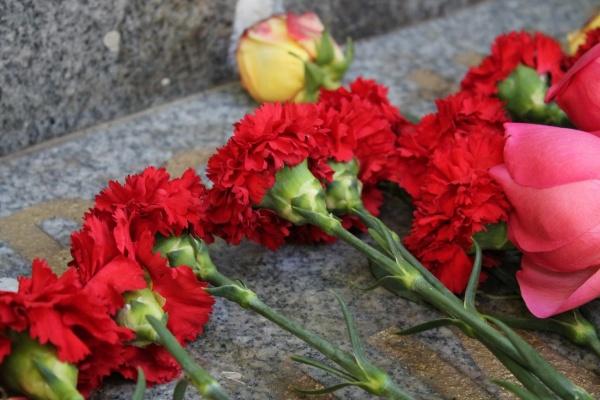 В Сирии погиб летчик из Воронежа
