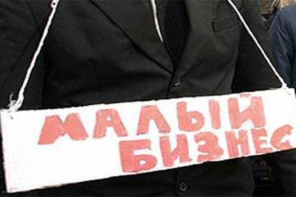 Программа спасения малого бизнеса в Воронеже практически провалилась