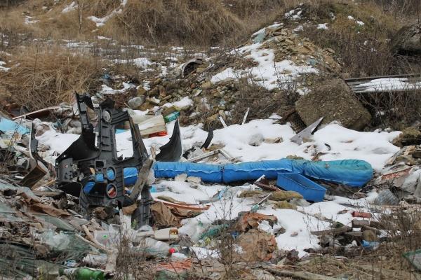 В Воронеже завалили мусором «зеленый пояс»