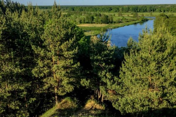 Новым исполнительным директором Совета муниципальных образований Воронежской области стал Сергей Волков