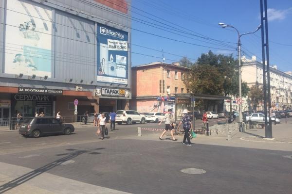 Воронежские общественники и чиновники жарко поспорили о возврате зебры у «Атмосферы»