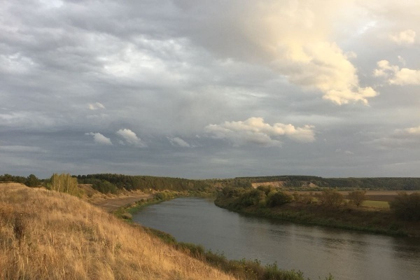 В Воронежской области снова ищут подрядчика на укрепление берега Дона