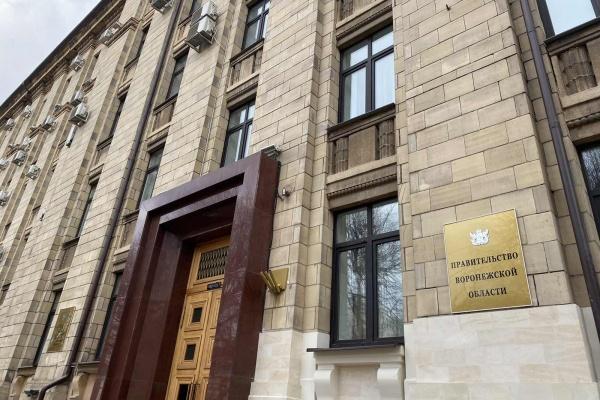 В Воронеже правительство и ЕР переходят на дистанционные приемы жителей