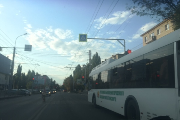 Воронежскому перевозчику удалось убедить мэрию изменить городской маршрут