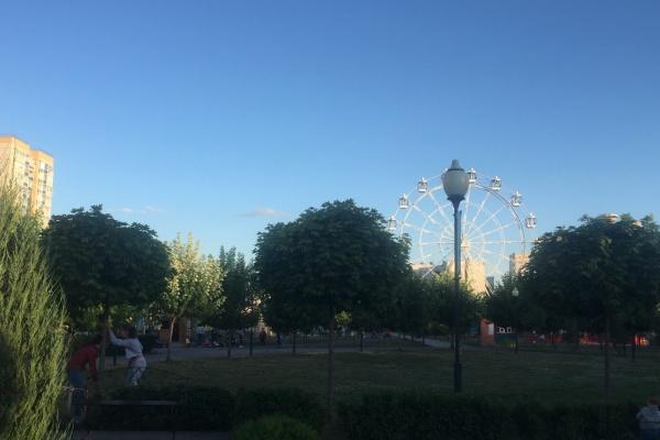Жителей Воронежа пригласили распланировать территорию парка Победы