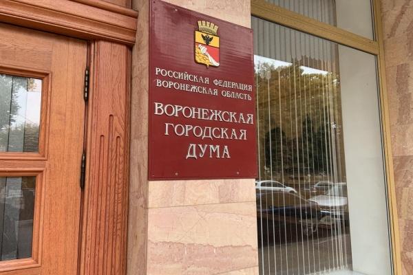 Воронежскую гордуму «лихорадит» после выборов