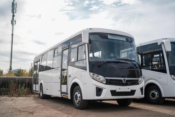 Воронежская транспортная компания намерена улучшить условия перевозок