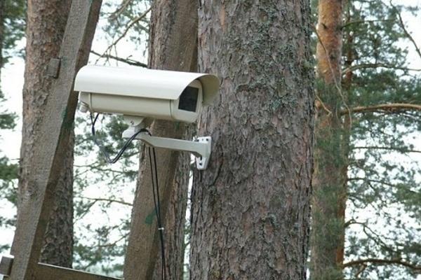 В Воронежских парках появится видеонаблюдение