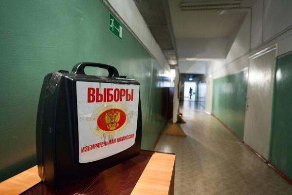 За аннинский одномандатный округ в Воронежской области поборются девять политиков