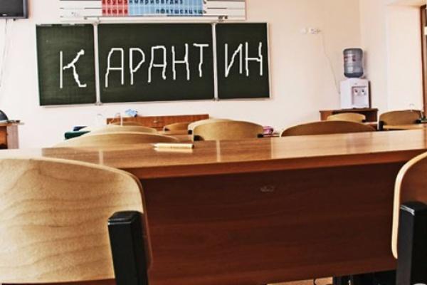Из-за ОРВИ накарантин вКалуге закрыли 14 классов в 5-ти школах