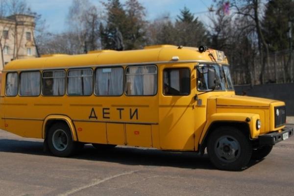 Воронежский сенатор потребовала увеличить число школьных автобусов в стране