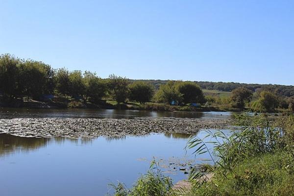 Воронежское озеро «Круглое» пытался слить собственник