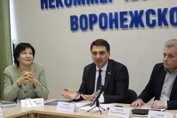 Воронежский депутат: местное самоуправление осталось без денег
