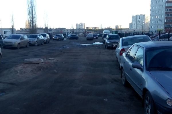 Воронежскую землю использовали беззаконно и бесконтрольно