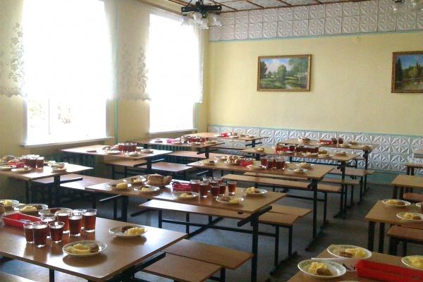 В Воронежские школы зашли аудиторы