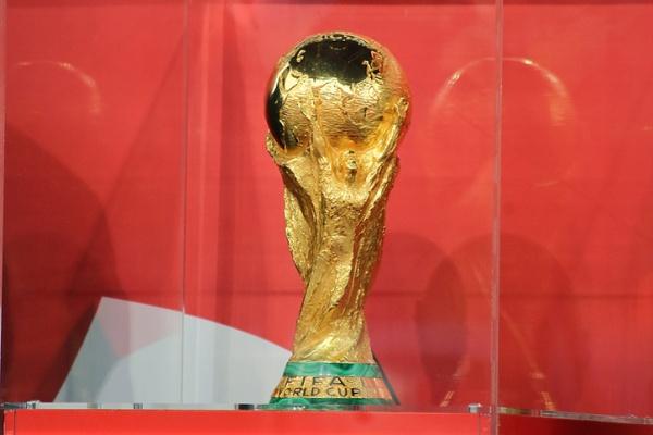 Воронеж встретил кубок FIFA