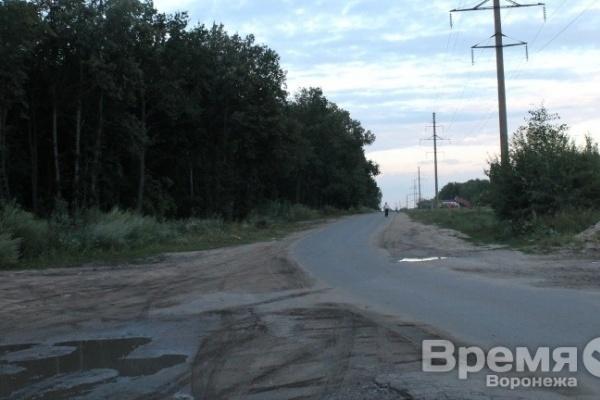 Леса в  пригородных зонах  Воронежской области отдадут  в аренду