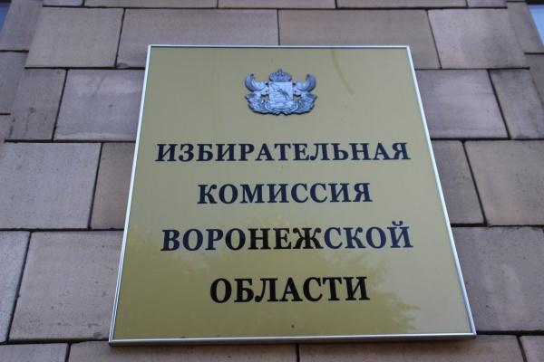Глава ЦИК ждет от Воронежской области «качественно иной» выборной кампании
