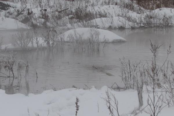 Воронежский «ЭкоЛайнер» только планирует строительство очистных сооружений