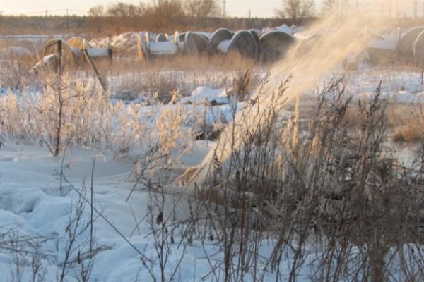 Проверка по факту слива сточных вод воронежским «ЭкоЛайнером» возобновлена