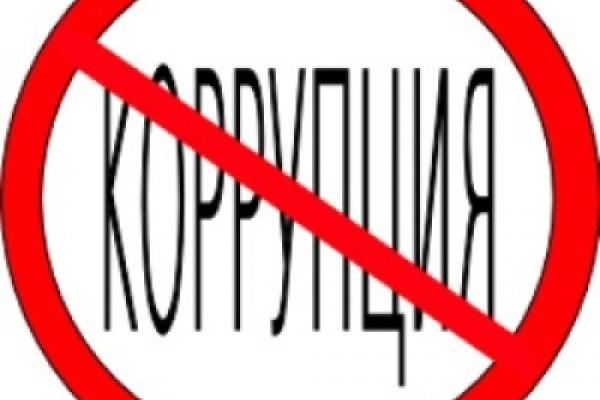 Как в Воронеже борются с коррупцией в социальной сфере