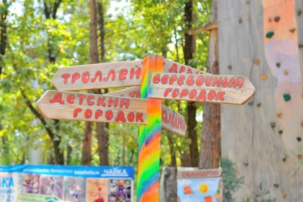Влетних лагрях Воронежской области отдохнули 7 700 детей