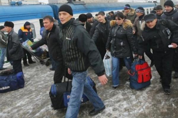 Численность воронежцев растет за счет миграции