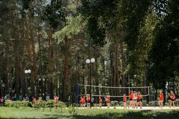 Вырубка деревьев в парке обошлась главе воронежской Анны в 150 тыс. рублей