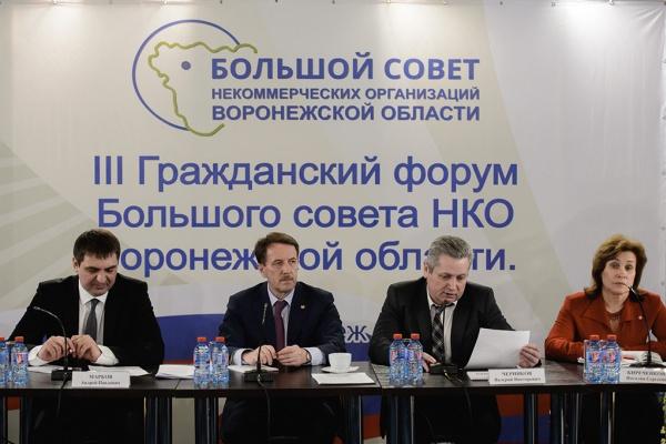 Шесть воронежских общественных проектов разделят 4,5 млн рублей