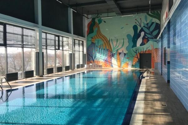 Проект нового спорткомплекса с бассейном в Воронеже подготовит местная фирма за 15,4 млн рублей