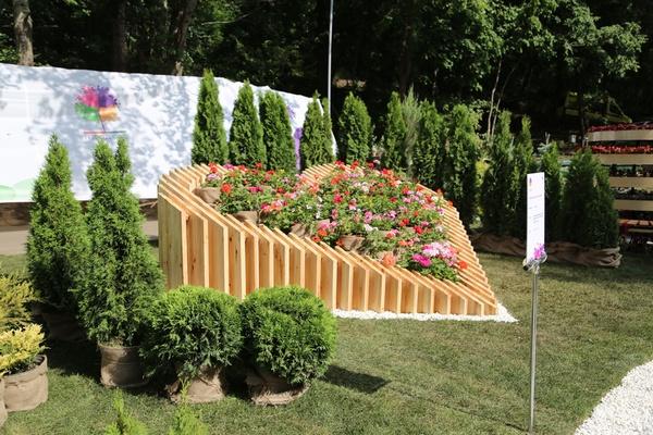 Воронежские власти потратят около 11 млн рублей на цветы и капусту