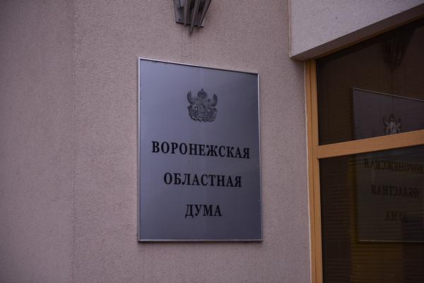 Дефицит казны Воронежской области произошел из-за избытка доходов