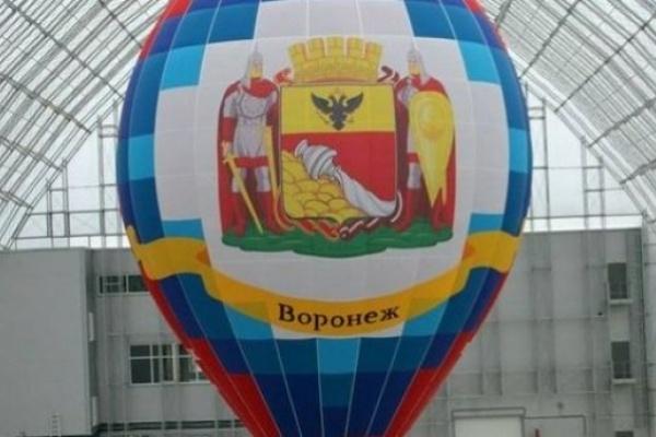 Общественную палату Воронежа могут выхолостить