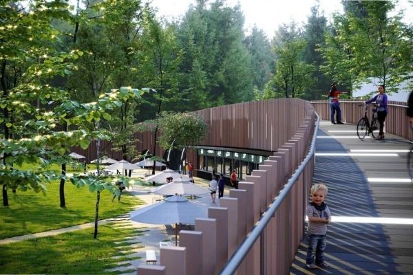 Реконструкцию воронежского парка «Орленок» приостановили