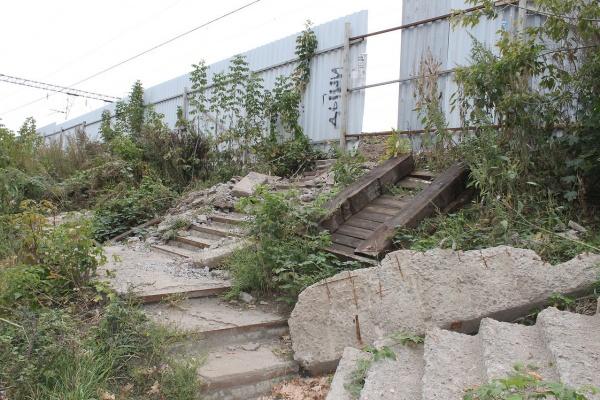Воронежцы потребовали строительства перехода у остановки «Динамо»