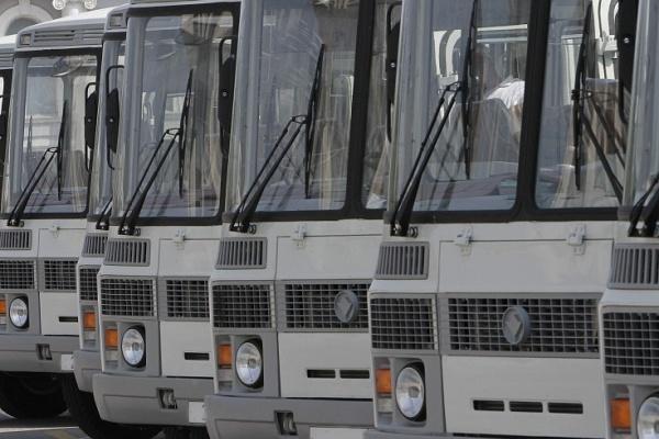 Воронежские перевозчики допустили более 400 нарушений