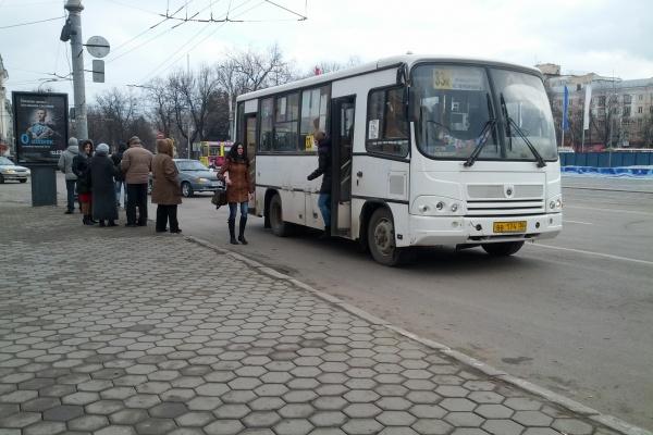 Под Воронежем перевозчики не защитили пассажиров от террористов