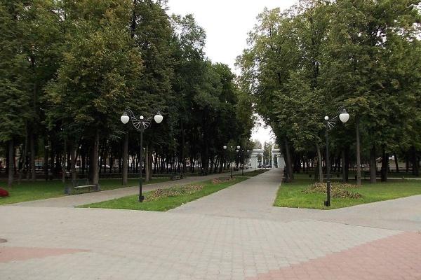 Парк «Орленок» в Воронеже останется без революционных изменений