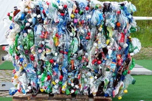 Власти предложили поставить в Воронеже автоматы для обмена мусора на деньги