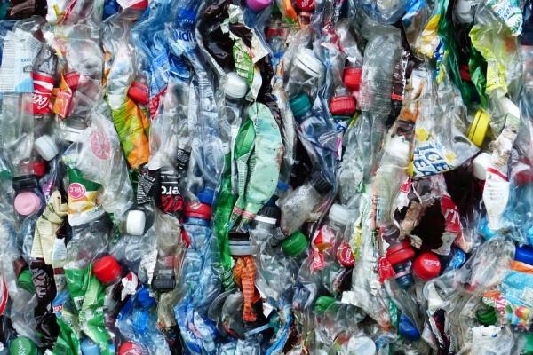 В Воронежской области на раздельный сбор мусора направят 500 млн рублей
