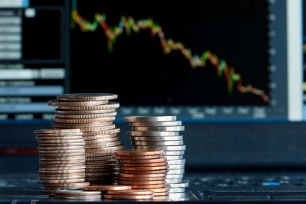 Экономические преступления в Воронежской области нанесли ущерб в 1,3 млрд рублей