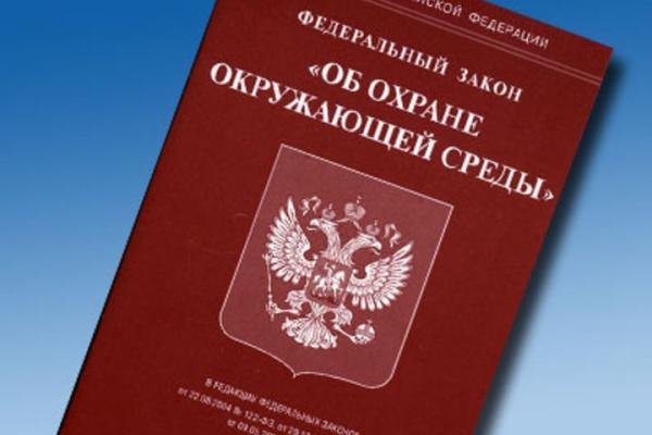 За полгода в Воронеже 2000 раз нарушили природоохранные законы