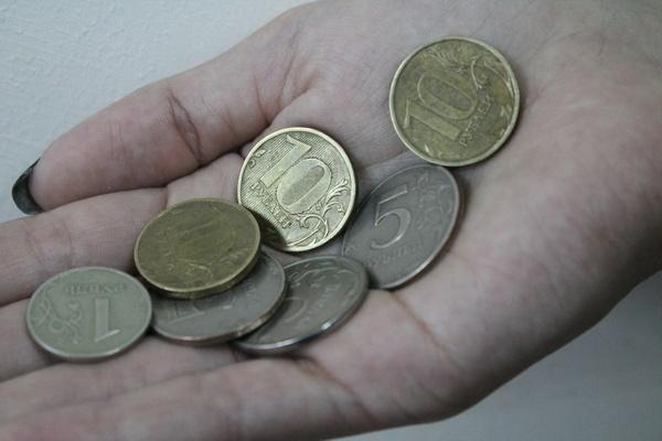 Бюджет Воронежа получил от приватизации меньше половины запланированного