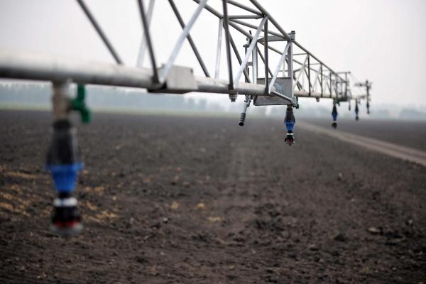 Воронежская почва пользуется спросом и предложением
