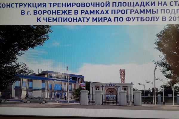 Мэрия Воронежа объявила аукционы на реконструкцию стадионов к футбольному чемпионату мира