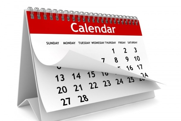 На выборном календаре воронежские организаторы «оторвали  первые листки»