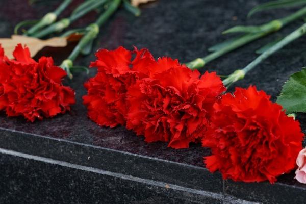 В Воронеже ветераны получат расширенные продуктовые наборы в преддверии Дня Победы