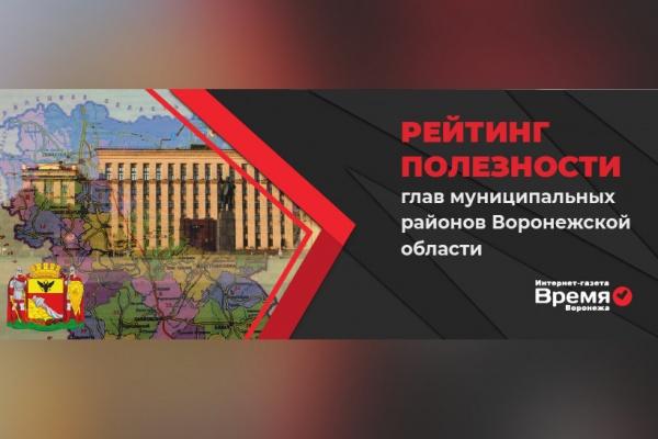 Подведены итоги рейтинга полезности глав муниципальных районов Воронежской области
